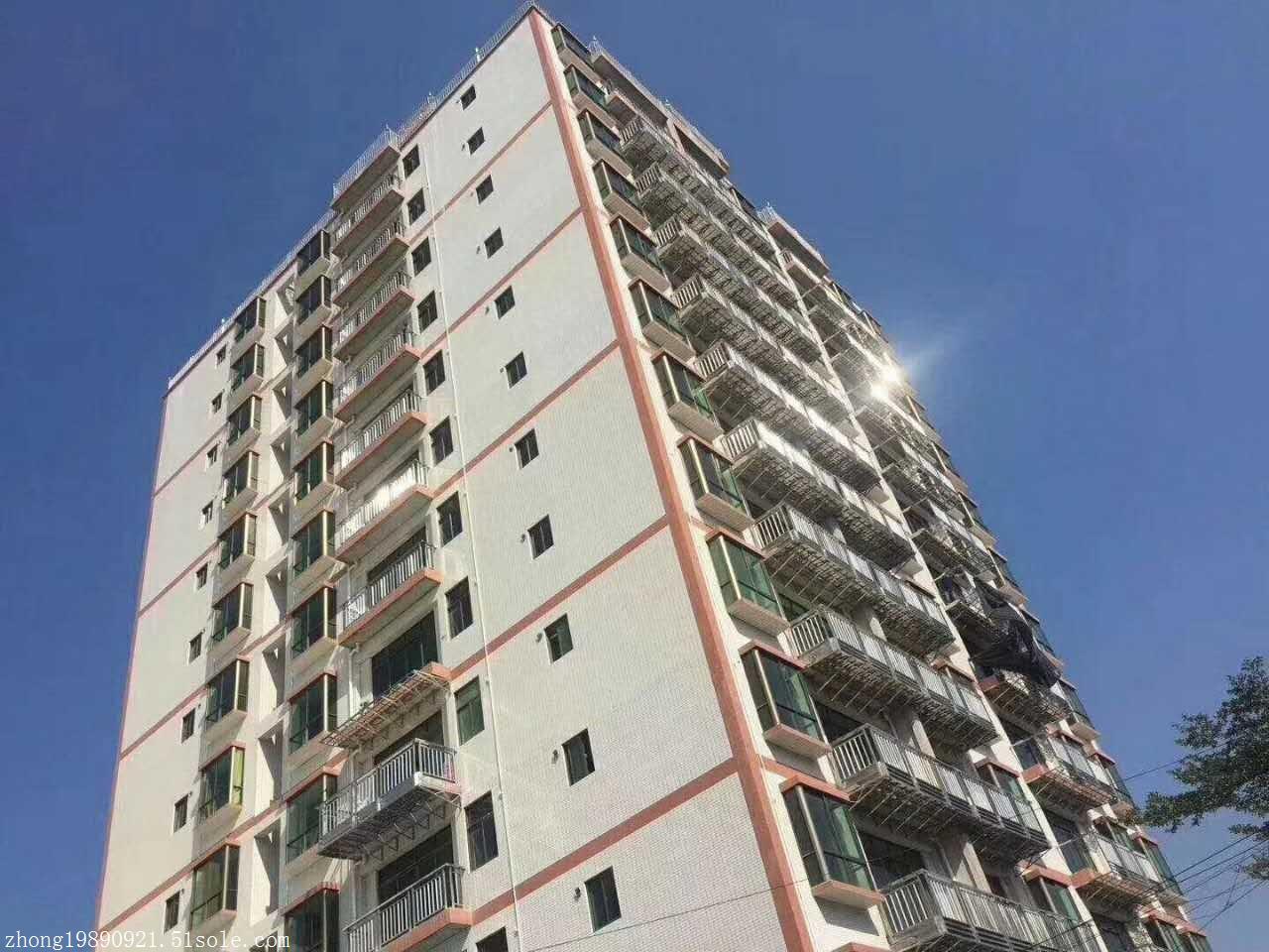 沙井村委统建楼 沙井中南环路边 财富公寓