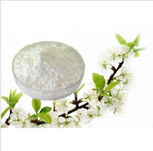 化工原料批发硫氰酸红霉素 7704-67-8 现货供应