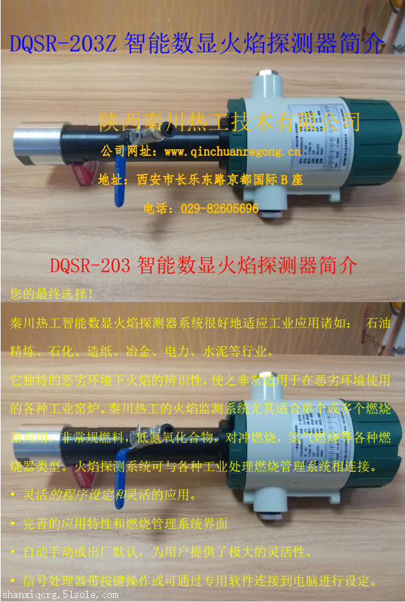 DQSR-203Z智能数显火焰探测器
