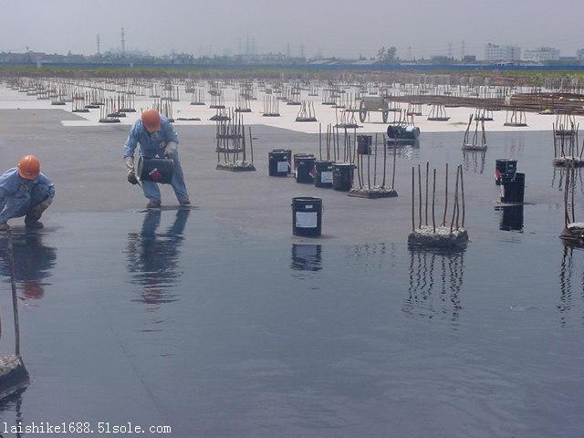 FYT环保型液体卷材厂家招商代理