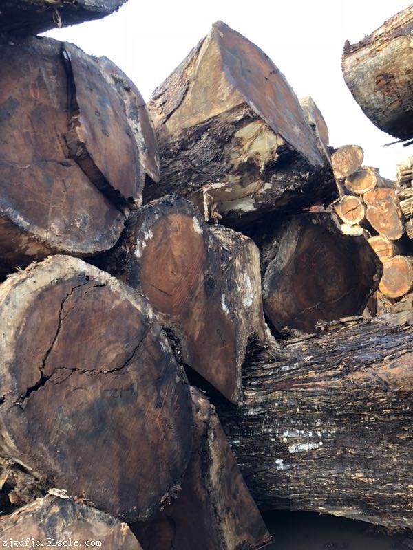 南美琥珀木胡桃木原木