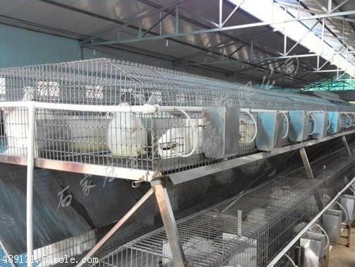 养鸡场环境测控系统 温湿度传感器监测 电脑手机远程控制