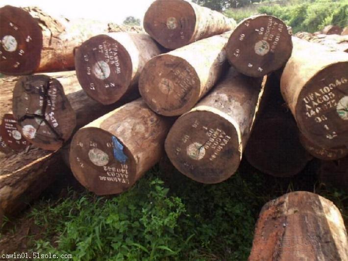 美国红白橡木进口报关|黄埔港橡木进口报关公司