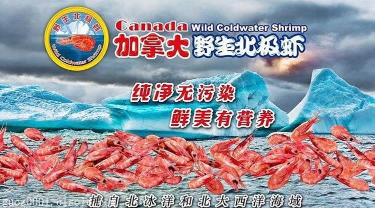 上海北极甜虾进口清关代理甜虾资料有哪些