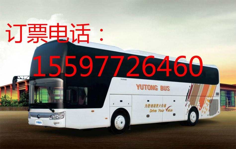 从晋江到綦江大巴客车问讯处\\专线大巴