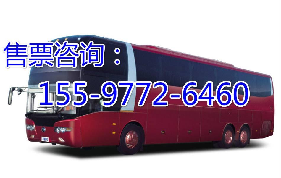 从晋江到彭水的直达汽车\\时刻表