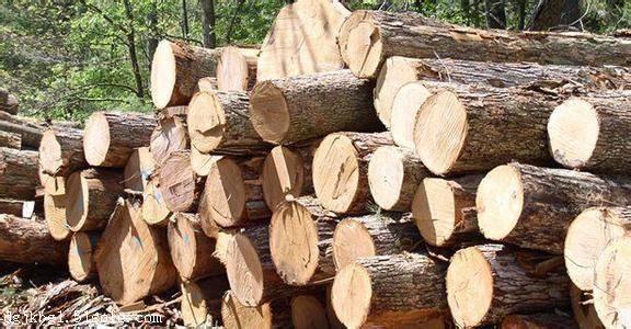 专业代理木制品进口报关