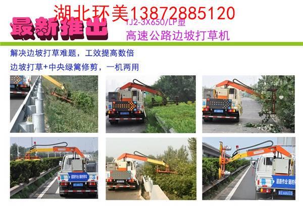 木槿树养护服务车图片
