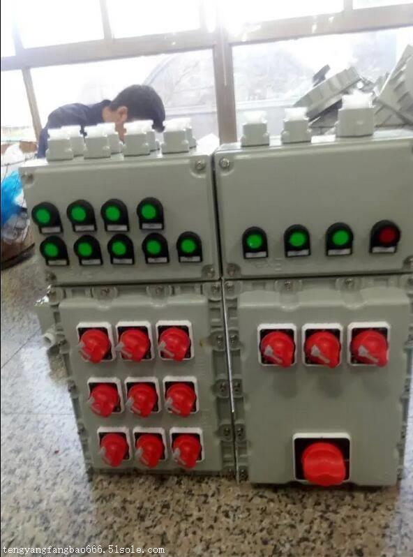 首页 电工电气 配电输电设备 配电箱 > 酿酒车间防爆照明控制配电箱