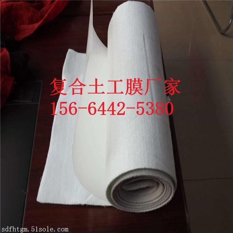 400克HDPE复合土工膜山东厂家