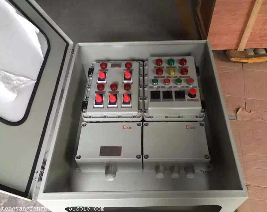 水泥厂粉尘防爆照明动力配电箱