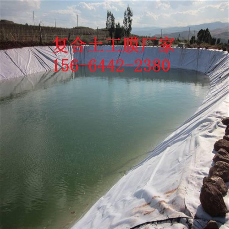 防水土工布广泛应用防渗隔离工程