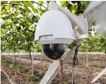智慧温室监控方案系统 远程温湿度环境监测