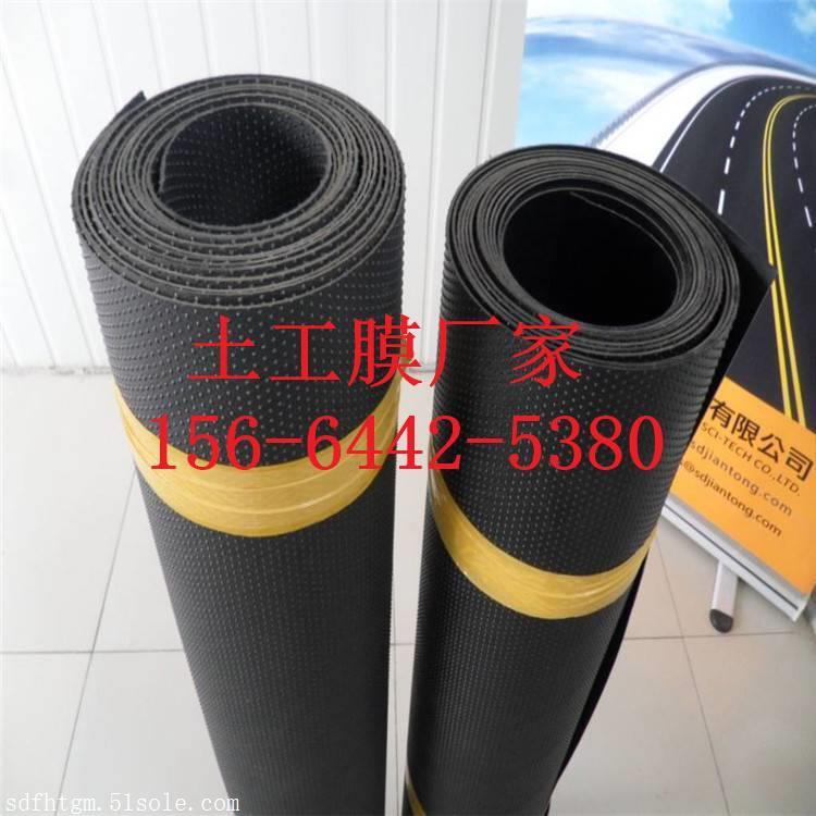 HDPE防滑性柱点糙面土工膜