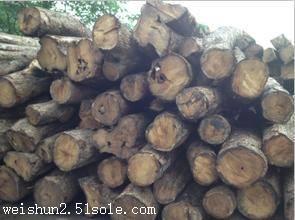 全球紫檀木类产品进口清关代理商