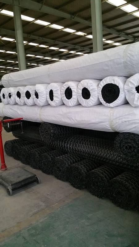 塑料双向土工格栅GSL40幅宽四米