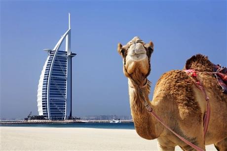 迪拜双清空运包税到门