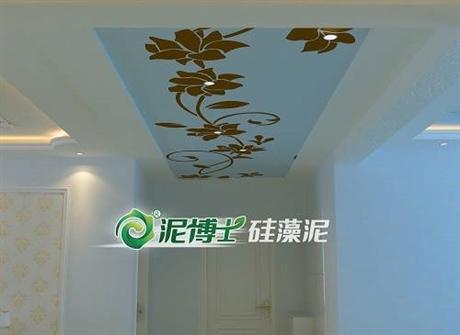 硅藻泥十大品牌,硅藻泥加盟