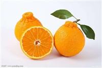 水果干进口报关的常见问题