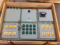 防爆现场配电箱防护等级IP65