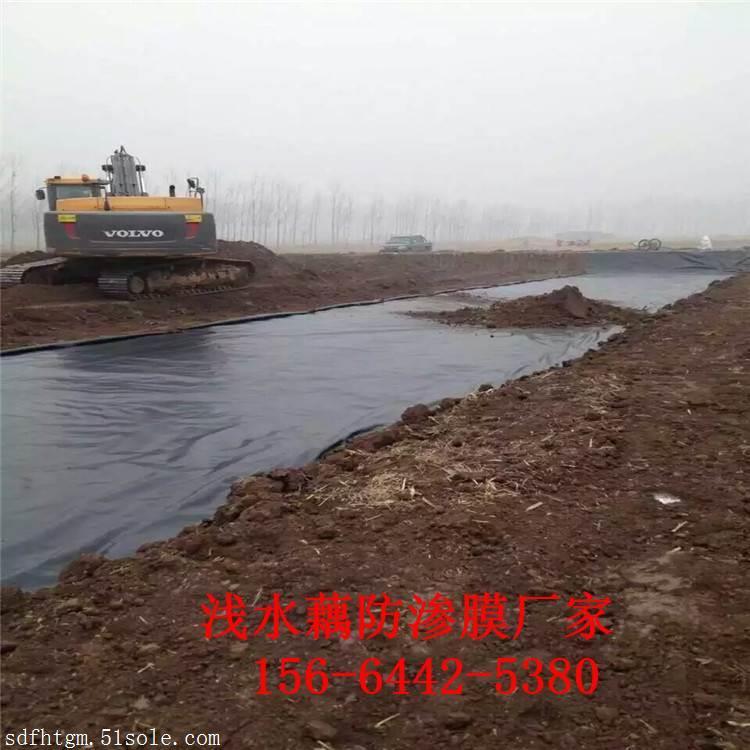 600克浅水藕池防渗土工布