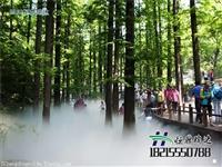 景观人造雾设备工程/景观水雾造雾设备/景观冷雾造雾设备