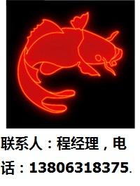 上海市霓虹灯