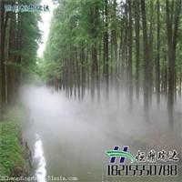 雾森造景设计