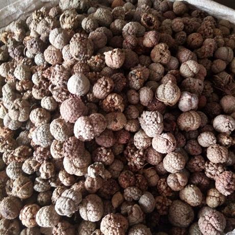 山慈菇多少钱一斤