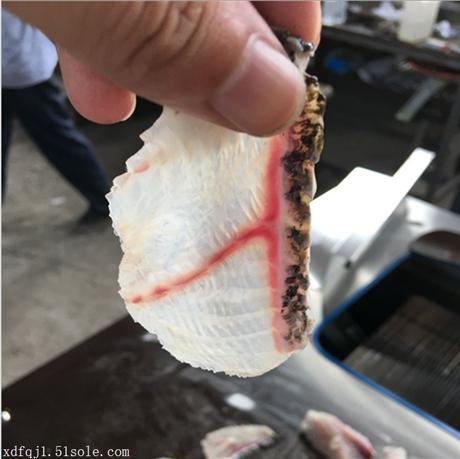 四川渔场自动切鱼片机型号