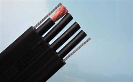 双钢丝耐高温屏蔽电缆 补偿导线