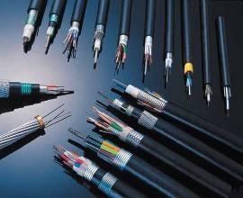 耐高温电缆WDFK330 聚四氟乙烯绝缘双细钢丝铠装点火电缆
