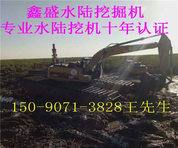 卡特水陆挖掘机出租价格