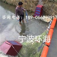 库区拦污排检查项目