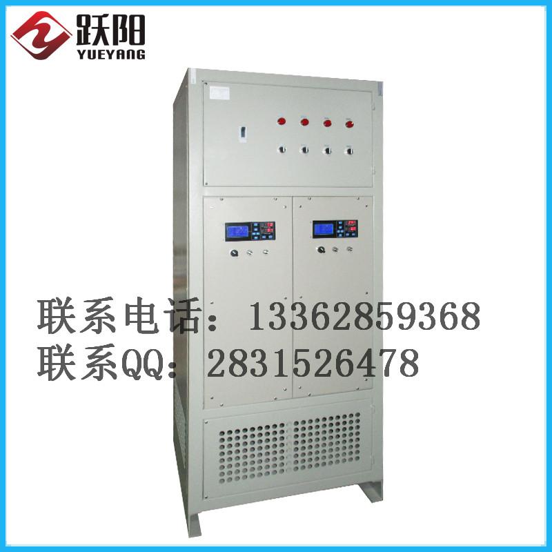 专业生产 电渗析设备 污水处理电源 定制