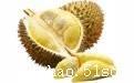榴莲丨进口榴莲需要什么资质丨食品进口需要办理哪些手续