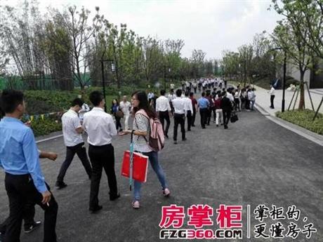 上海孔雀城 2018最佳价值洼地