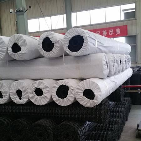 用于外贸的幅宽二米塑料双向土工格栅