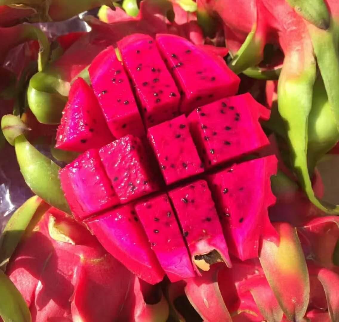 泰国火龙果进口清关|新鲜水果进口报关