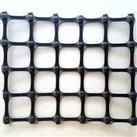 外贸用GGR/PP/BS55-55网孔6cm