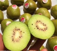 泰国奇异果进口清关|新鲜水果进口报关