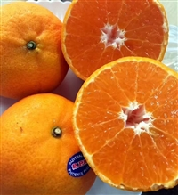 泰国柑橘进口清关|新鲜水果进口报关