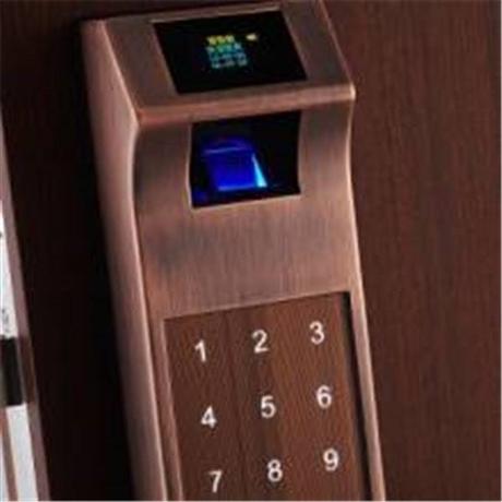 泰安指纹密码锁生产厂家