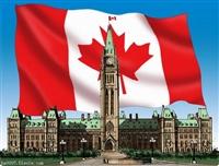 加拿大海运双清到门