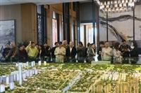 上海孔雀城真的好吗