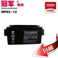 不间断电源蓄电池NP65-12 12V65AH UPS电瓶 不间断电源蓄电池