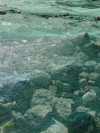 遮阳网 盖土网 建筑工地盖土网 防尘盖土网黑色绿色