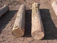 体育木地板 实木运动地板技术要求