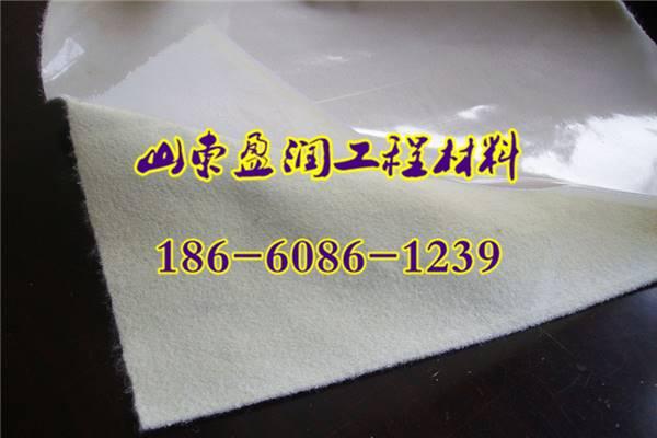 南浔300g/400g复合土工布厂家经销