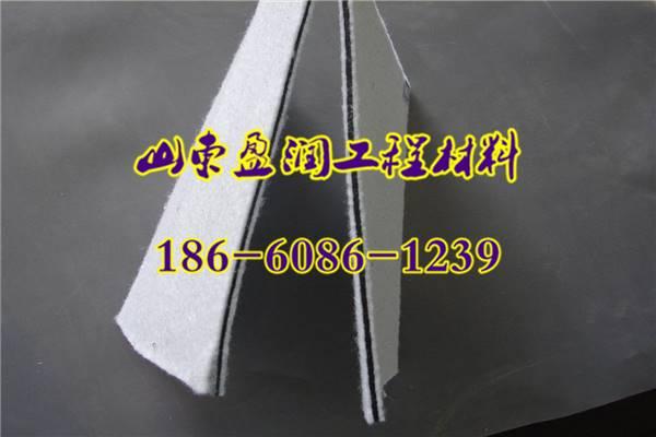 郧西县300g/400g复合土工布厂家经销